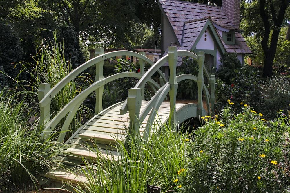white wooden bridge over green plants