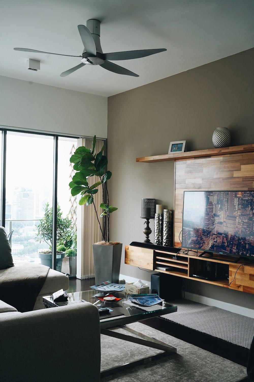 black flat screen tv turned on near green indoor plant