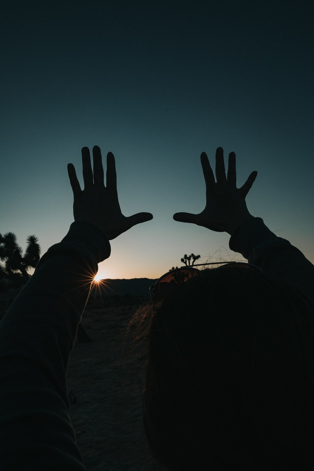 silhouette of persons hand