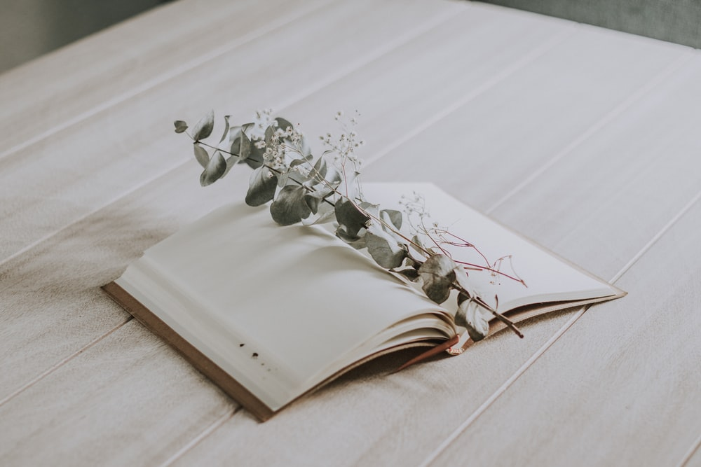 white floral on white book page
