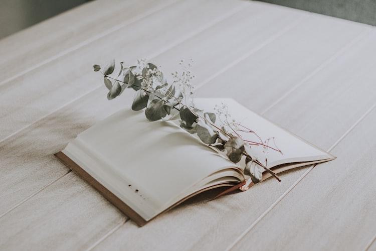 Libro pagine bianche fiore amleto