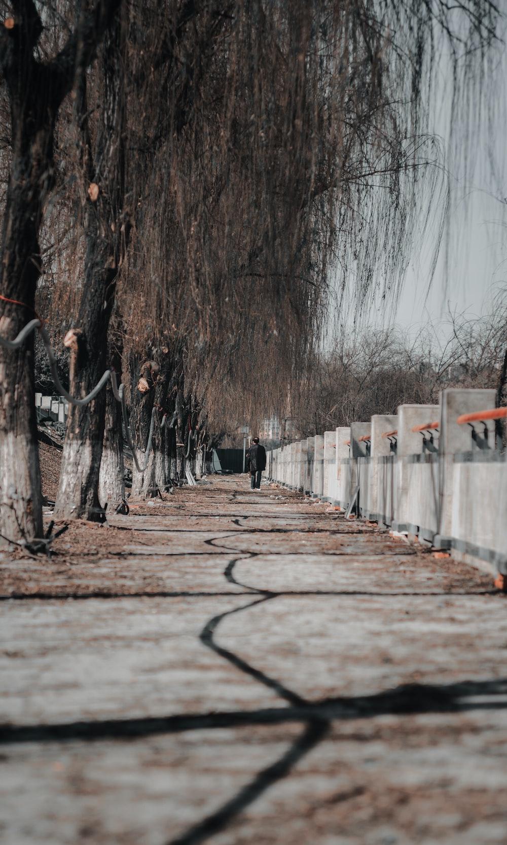person in black jacket walking on wooden bridge during daytime
