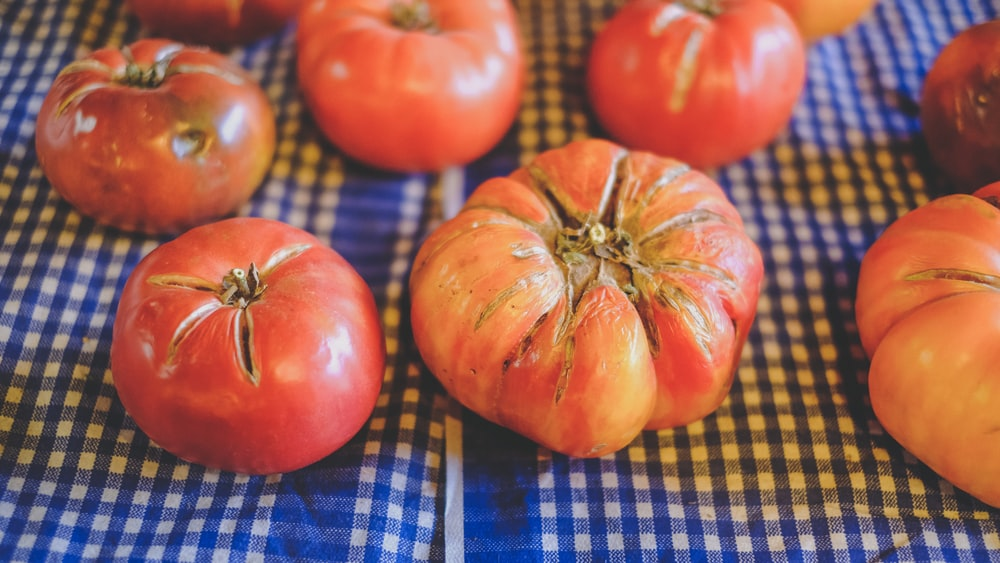 red tomato on blue and white checkered textile