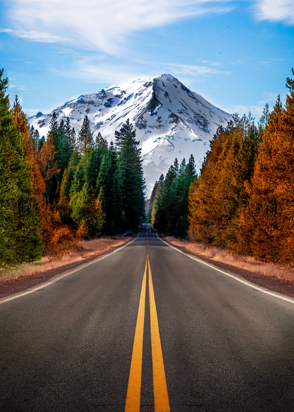 gray concrete road between green trees and mountain during daytime