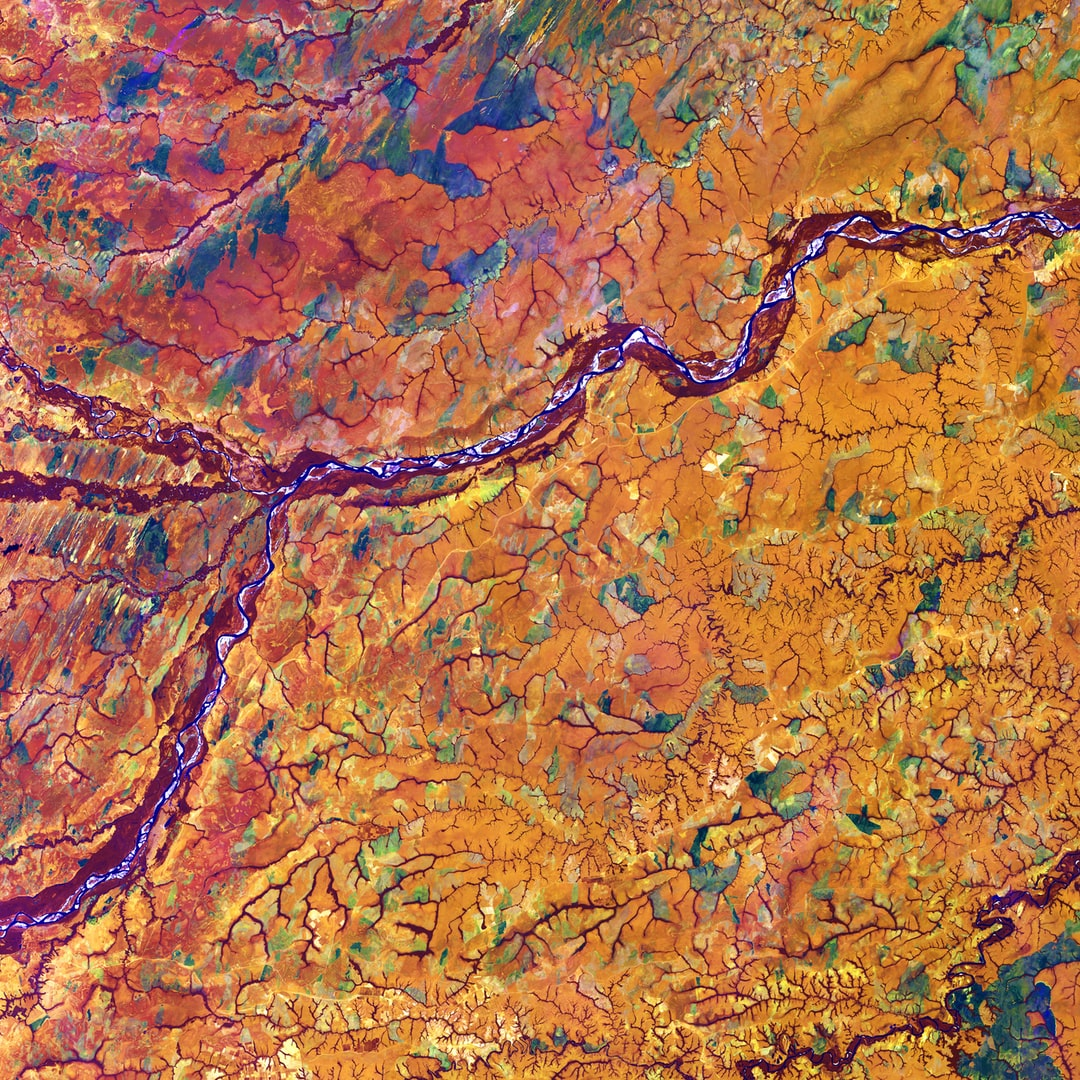 Marking part of the boundary between Colombia and Venezuela, the Meta River resembles an artery among capillaries within the human body. Those capillary-like features actually depict dense tree cover along the numerous streams that flow among rich tropical grassland.