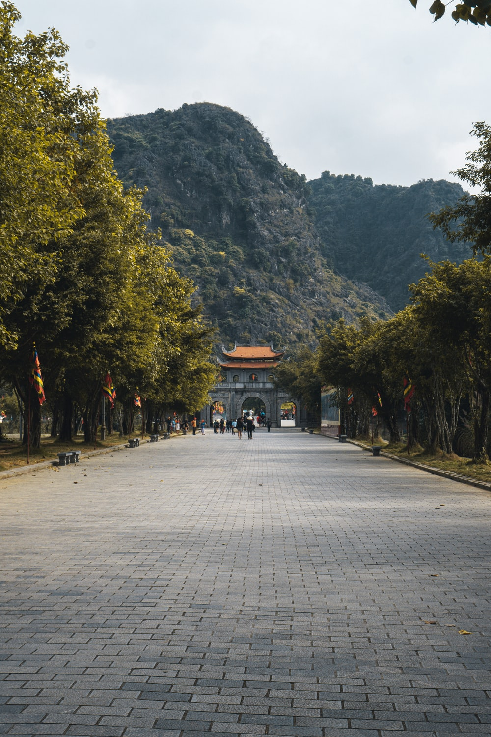 people walking on gray concrete road near green trees during daytime