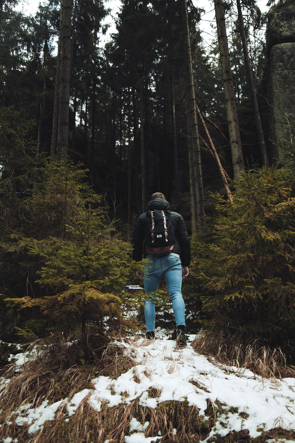 woman in black jacket and blue denim jeans walking on forest during daytime