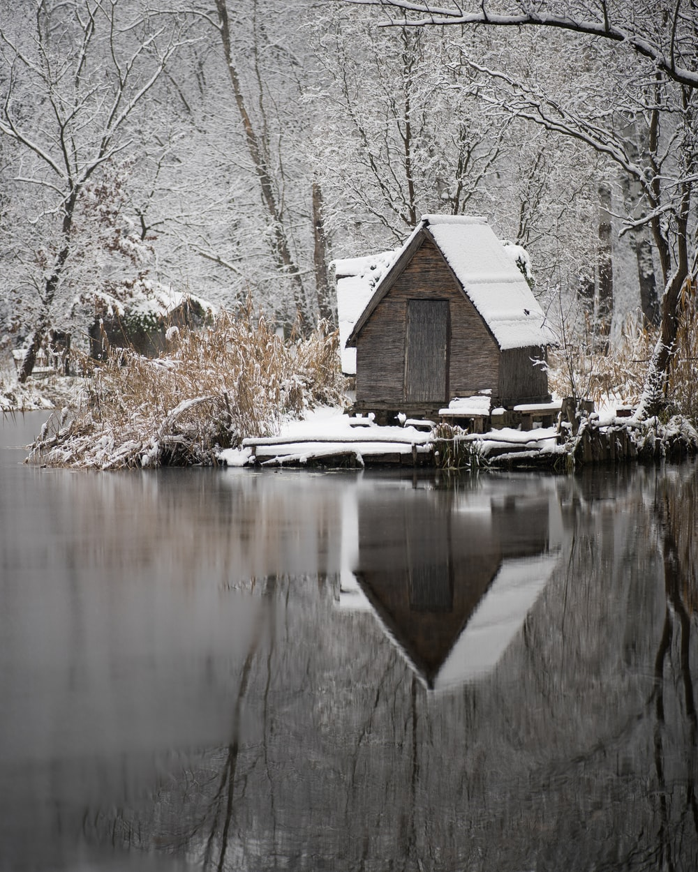 brown wooden house near lake during daytime