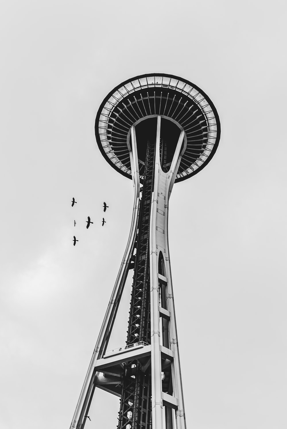 grayscale photo of bird flying over the tower