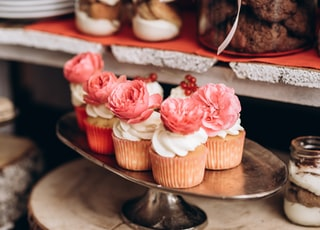 cupcakes on stainless steel tray