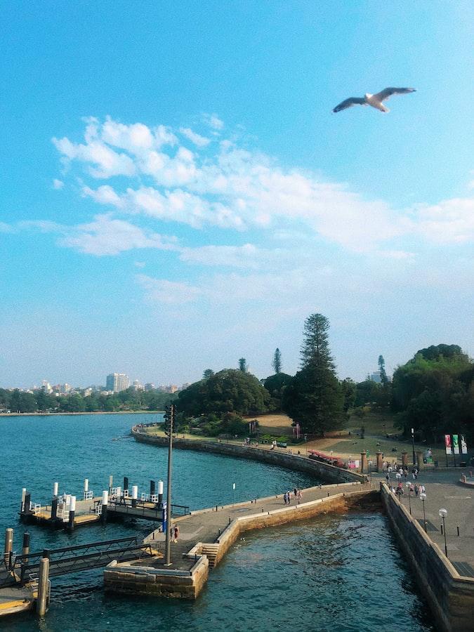 Circular Quay at daytime