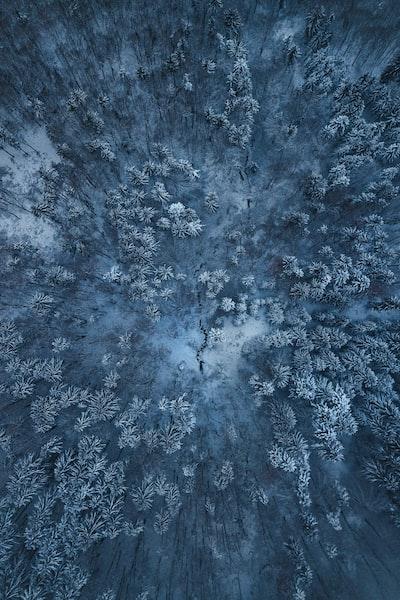 Drone shot in Winter