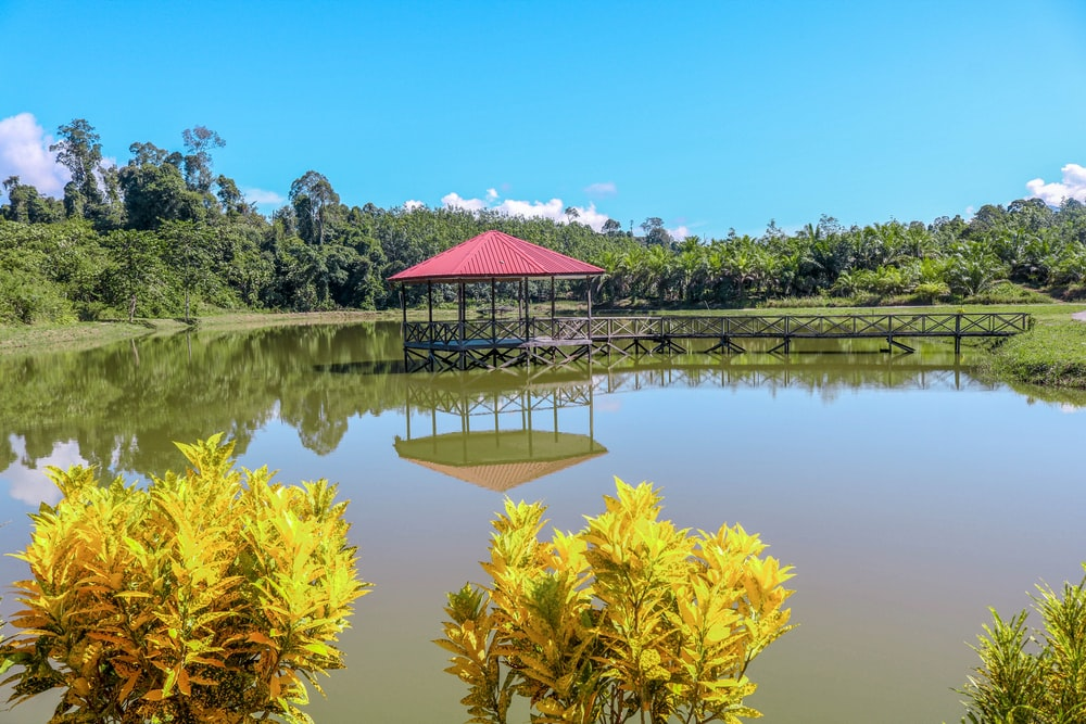 red and white house near lake surrounded by green trees under blue sky during daytime