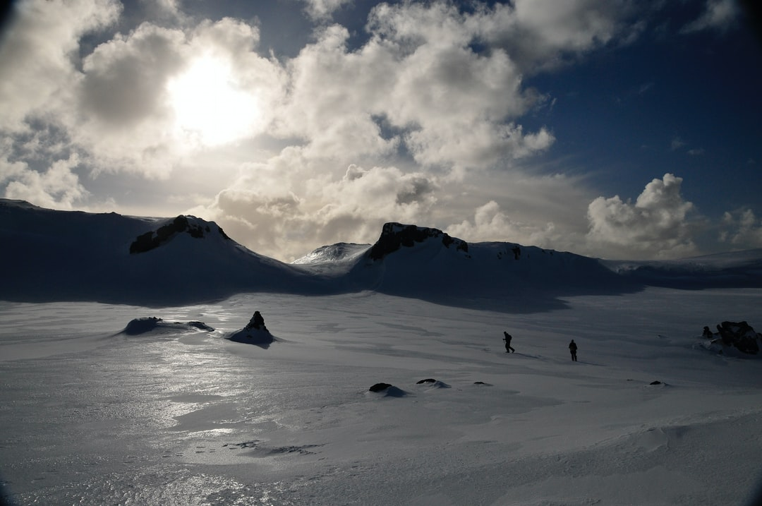 AMLR scientists monitor many breeding sites around Livingston Island, some of which are far away from the Cape Shirreff field station. During early summer,before the snow has melted, scientists will ski from site to site.