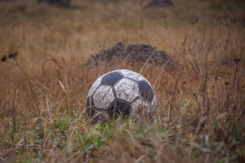 white and black soccer ball on brown grass field during daytime