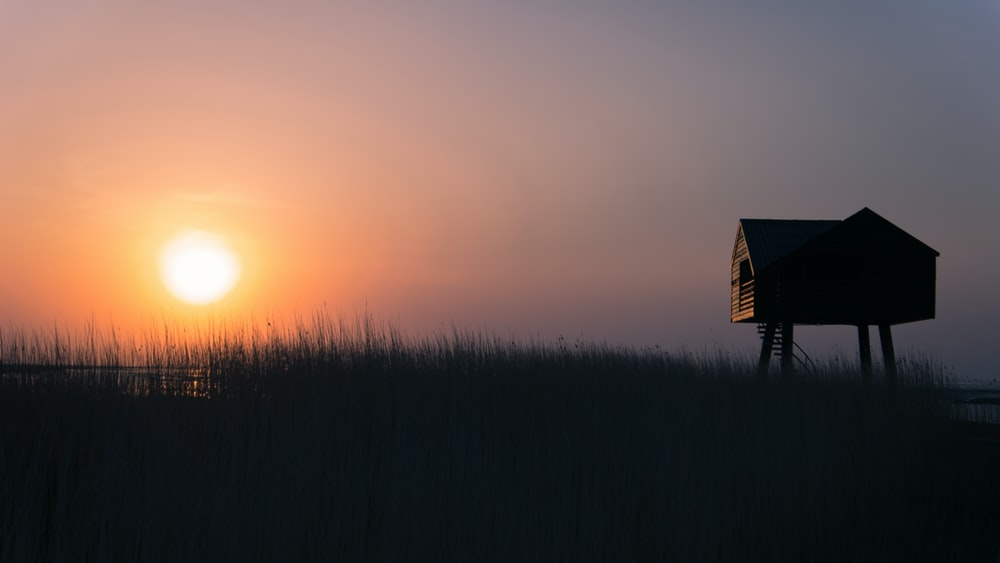 silhouette of house on forest during sunset