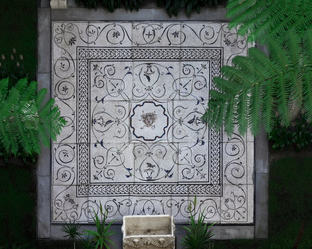 green fern plant on grey and white floral ceramic tile