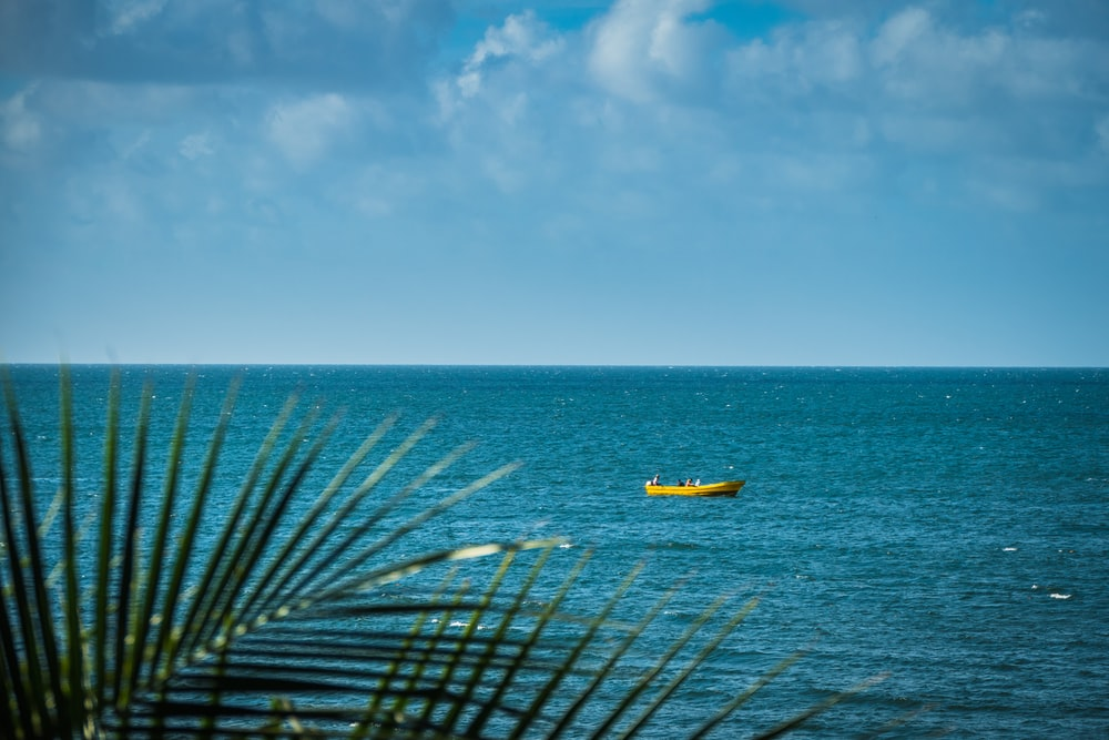 yellow and white boat on sea under blue sky during daytime