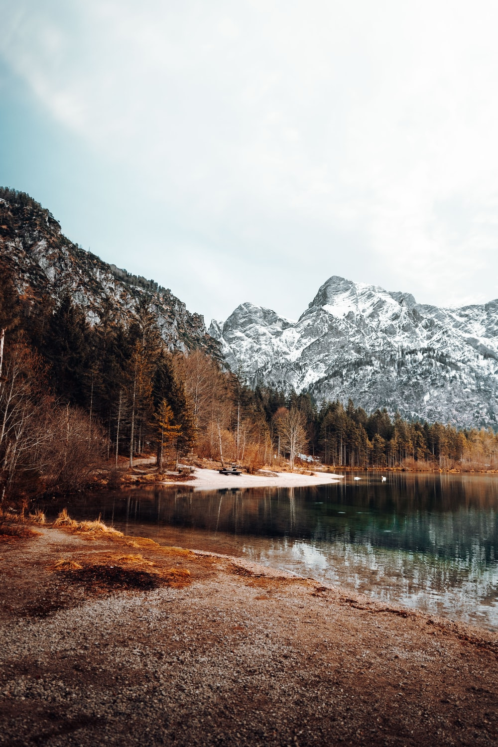 lake surrounded by trees and mountains during daytime
