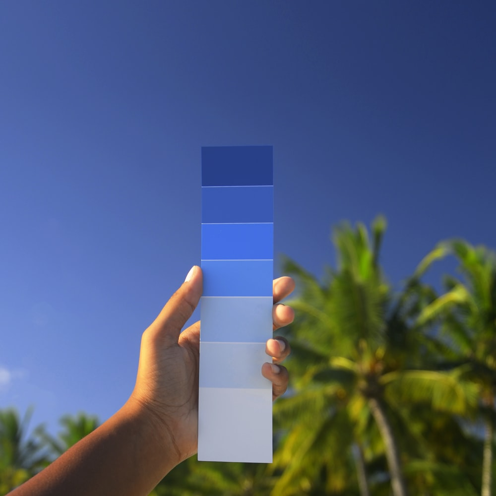 person holding white and blue box