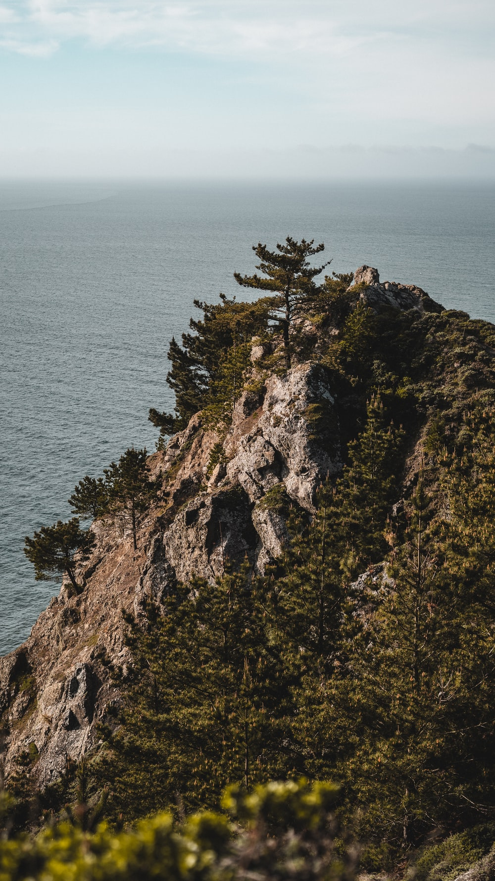 green trees on brown rock formation near sea during daytime
