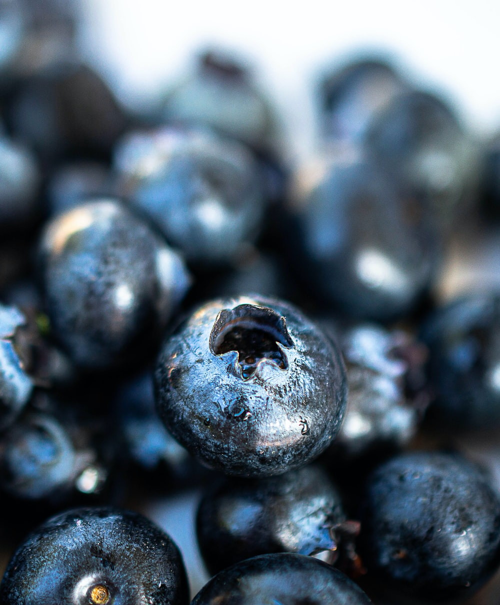 blue berries in close up photography