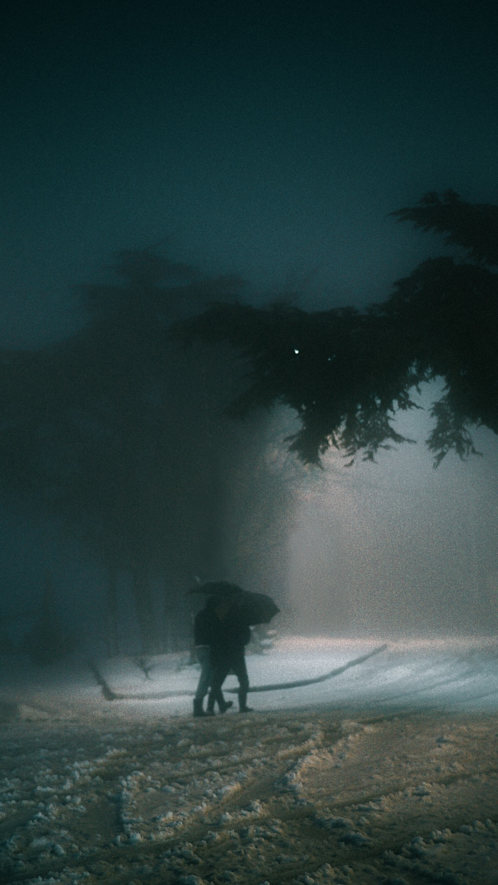 person standing on snow covered ground during night time