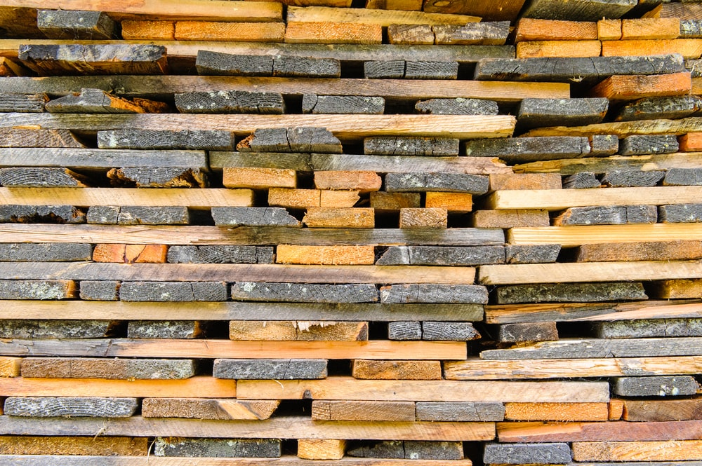 brown and gray wooden logs