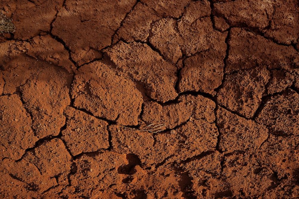 brown concrete brick wall during daytime