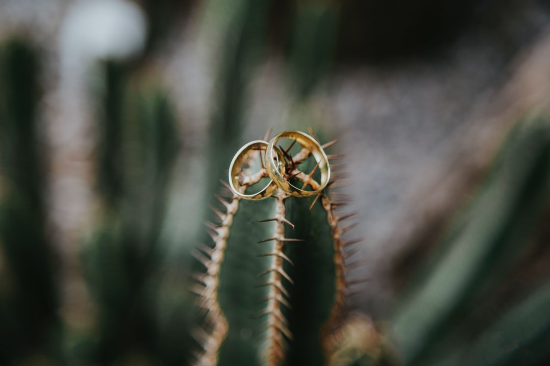 Wedding Rings - By Marcos Paulo Prado - unsplash