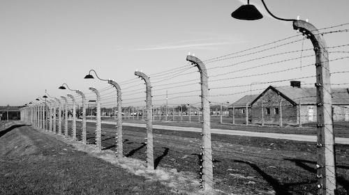 Auschwitz, Death Anxiety, and 2020