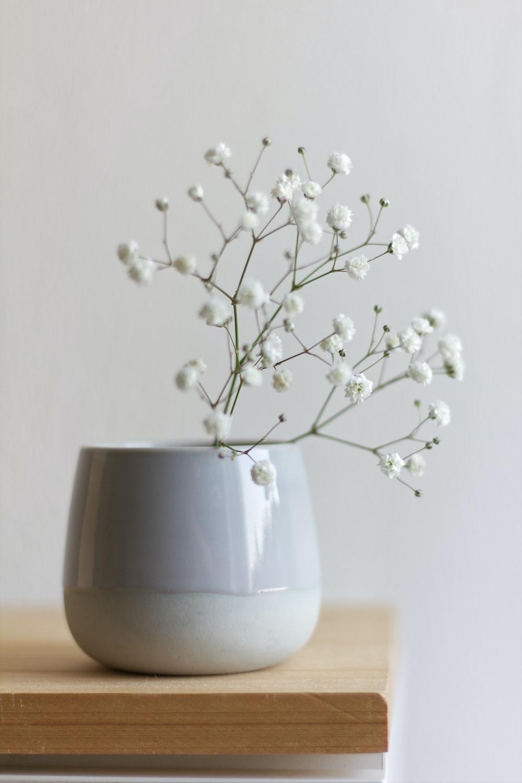 white flower in white ceramic vase