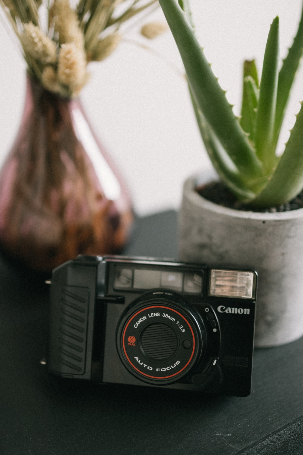 black and silver camera beside green plant