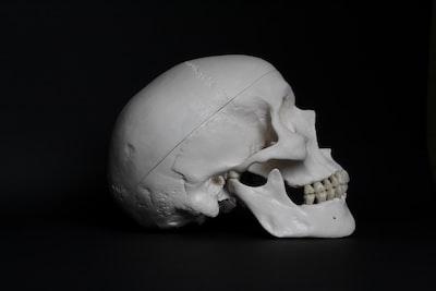 white skull on black surface skull teams background