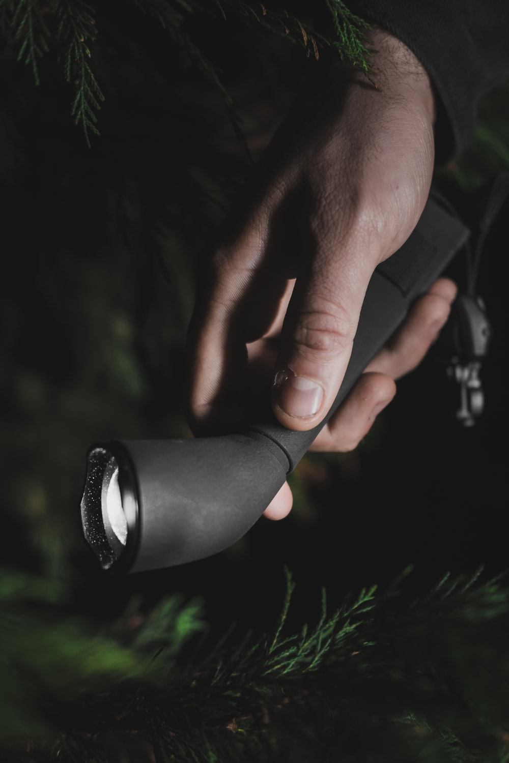 person holding black and silver camera lens