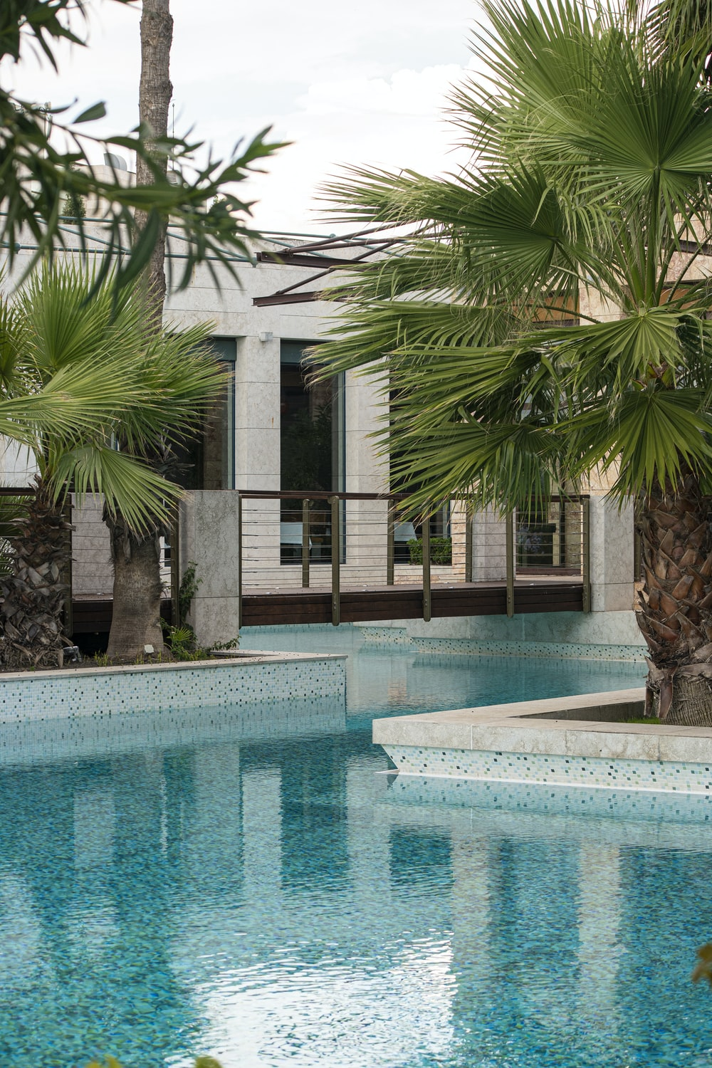 swimming pool near palm trees and building