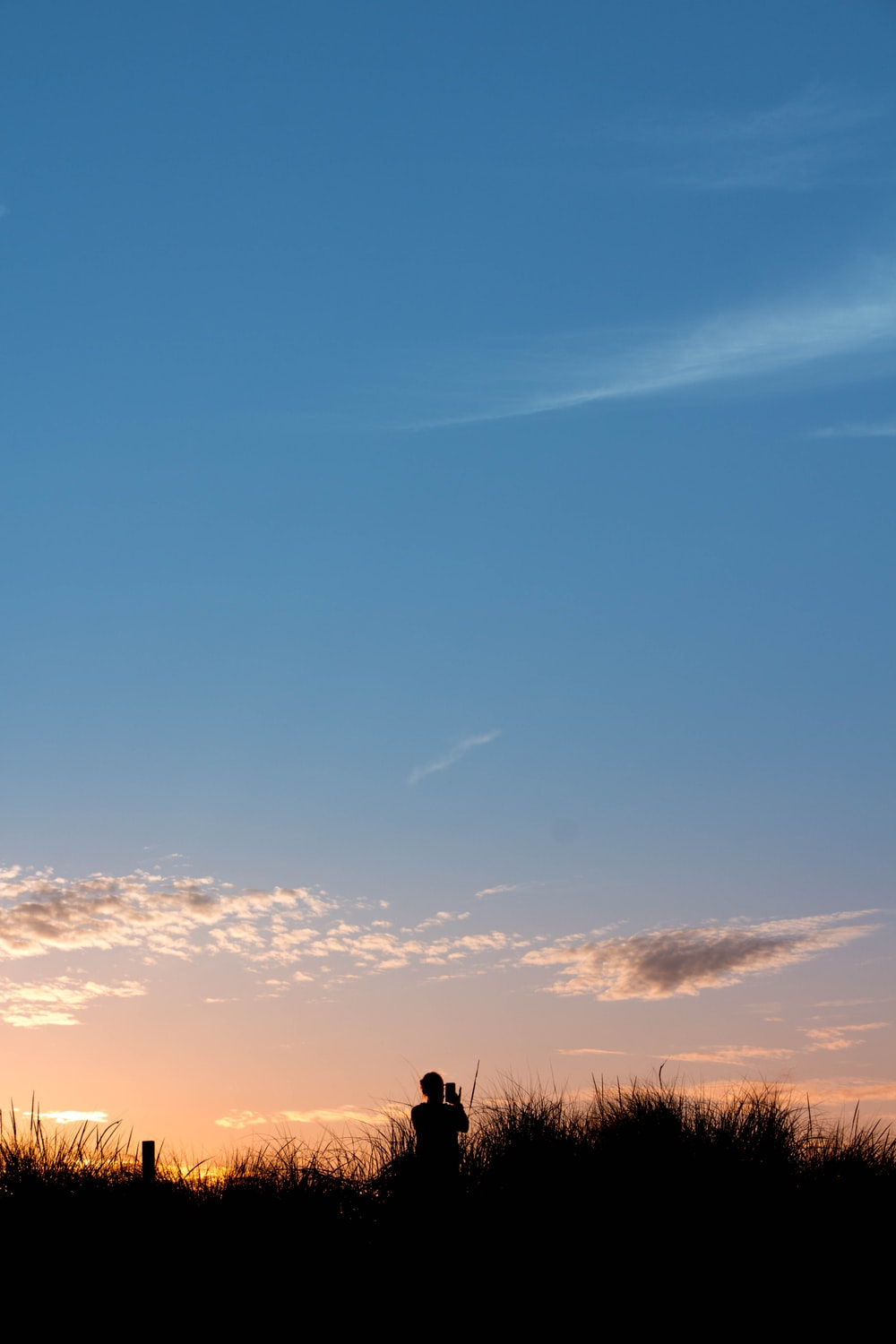 silhouette of person standing on grass field during sunset