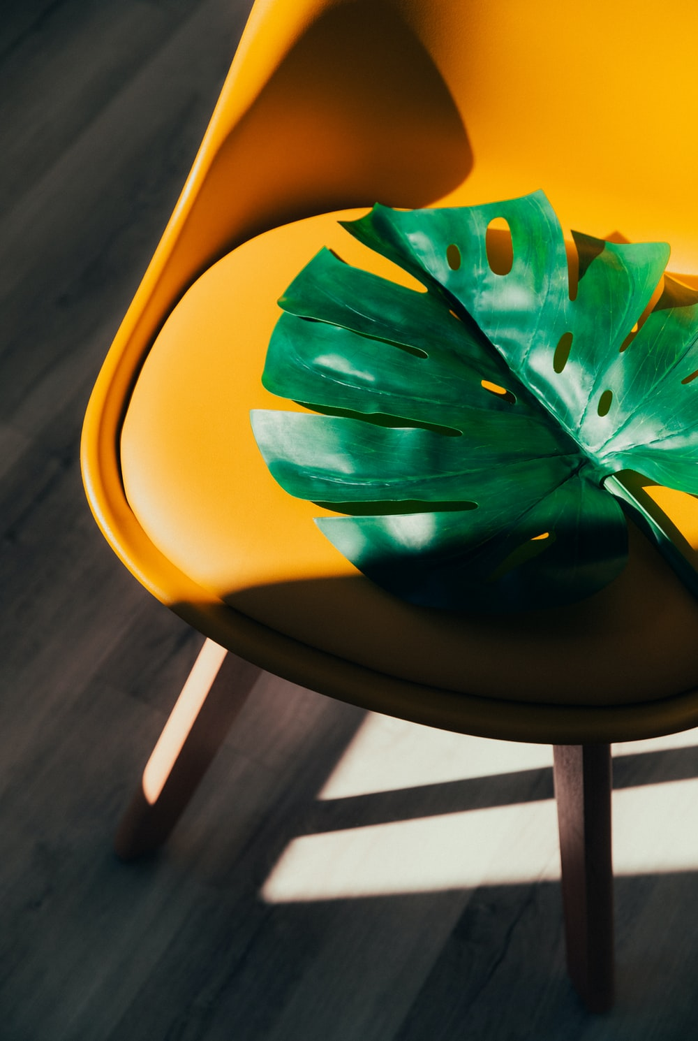 green leaf on yellow chair