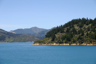 green trees on island during daytime south island teams background