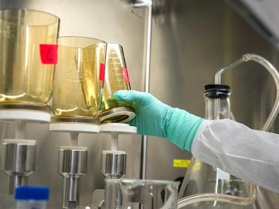 FAQ: a cosa servono i test sierologici?