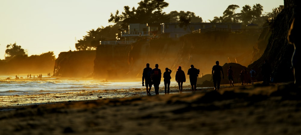 silhouette of people standing on seashore during daytime