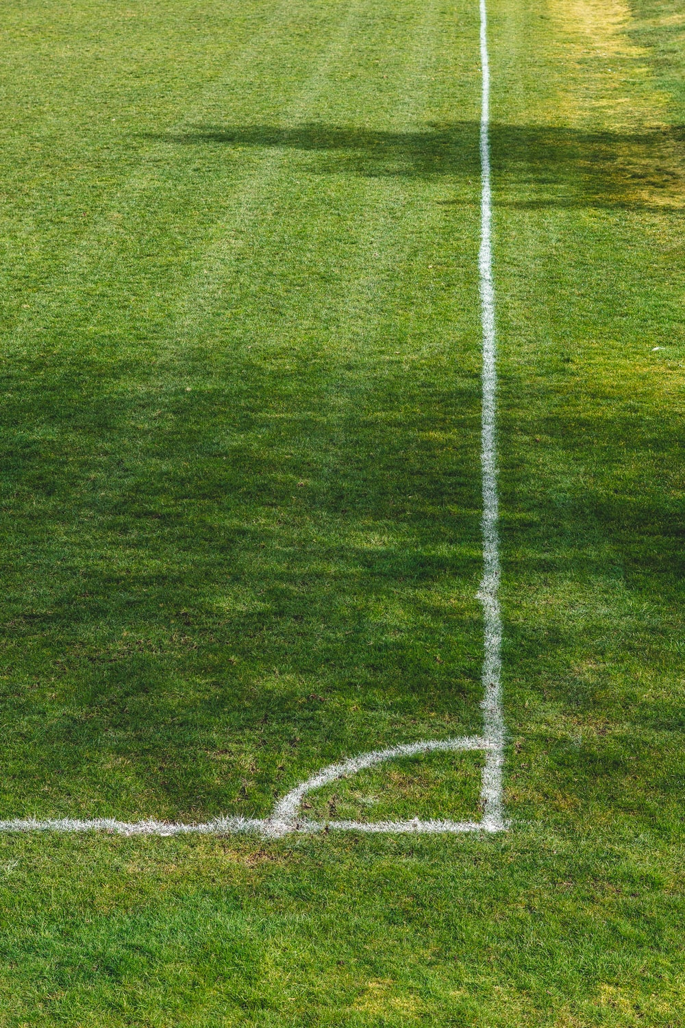 white soccer goal net on green grass field