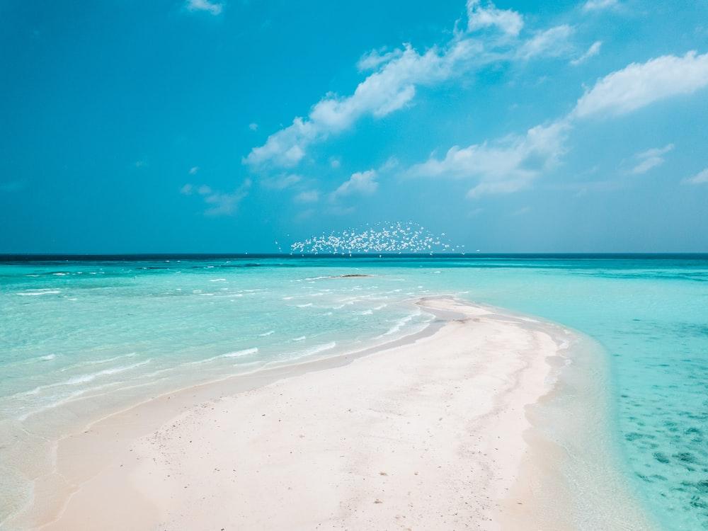 white sand beach under blue sky during daytime