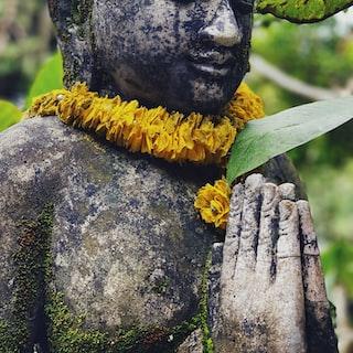 Polaroid Image - exploring balinese culture