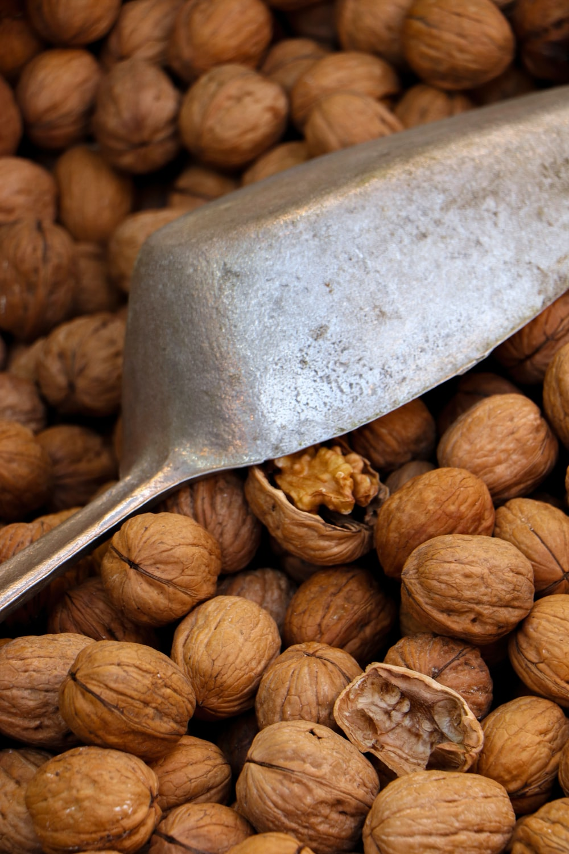 brown nuts on stainless steel spoon