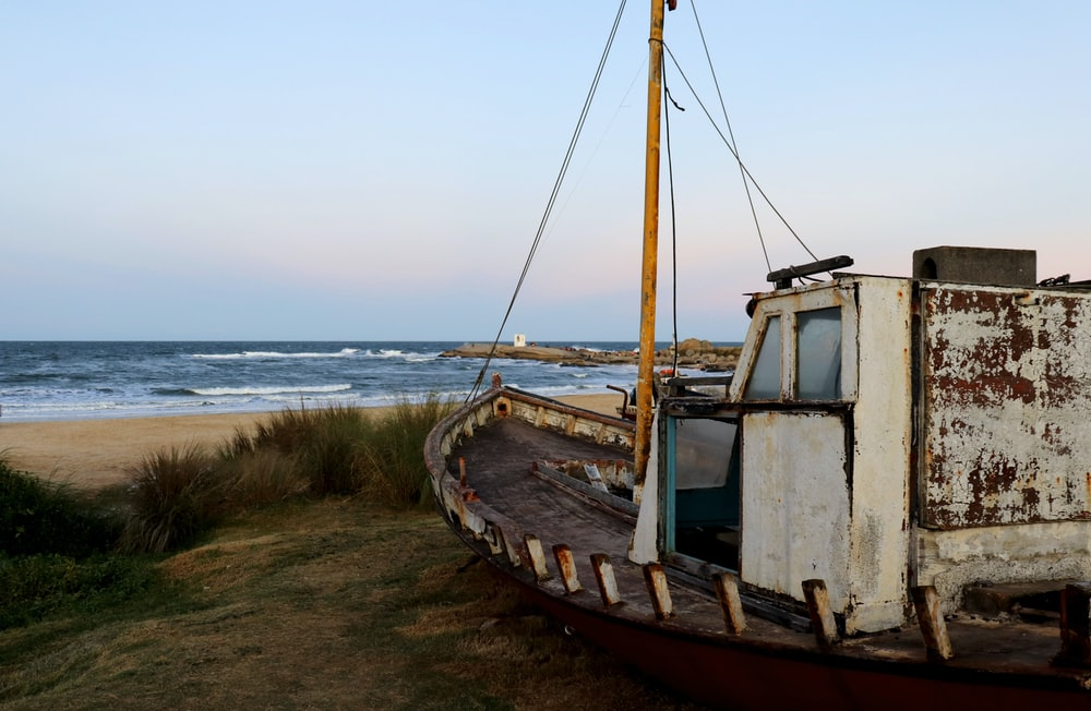 brown and white boat on seashore during daytime