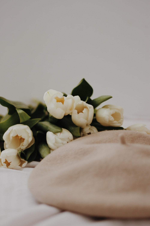 white roses on white textile