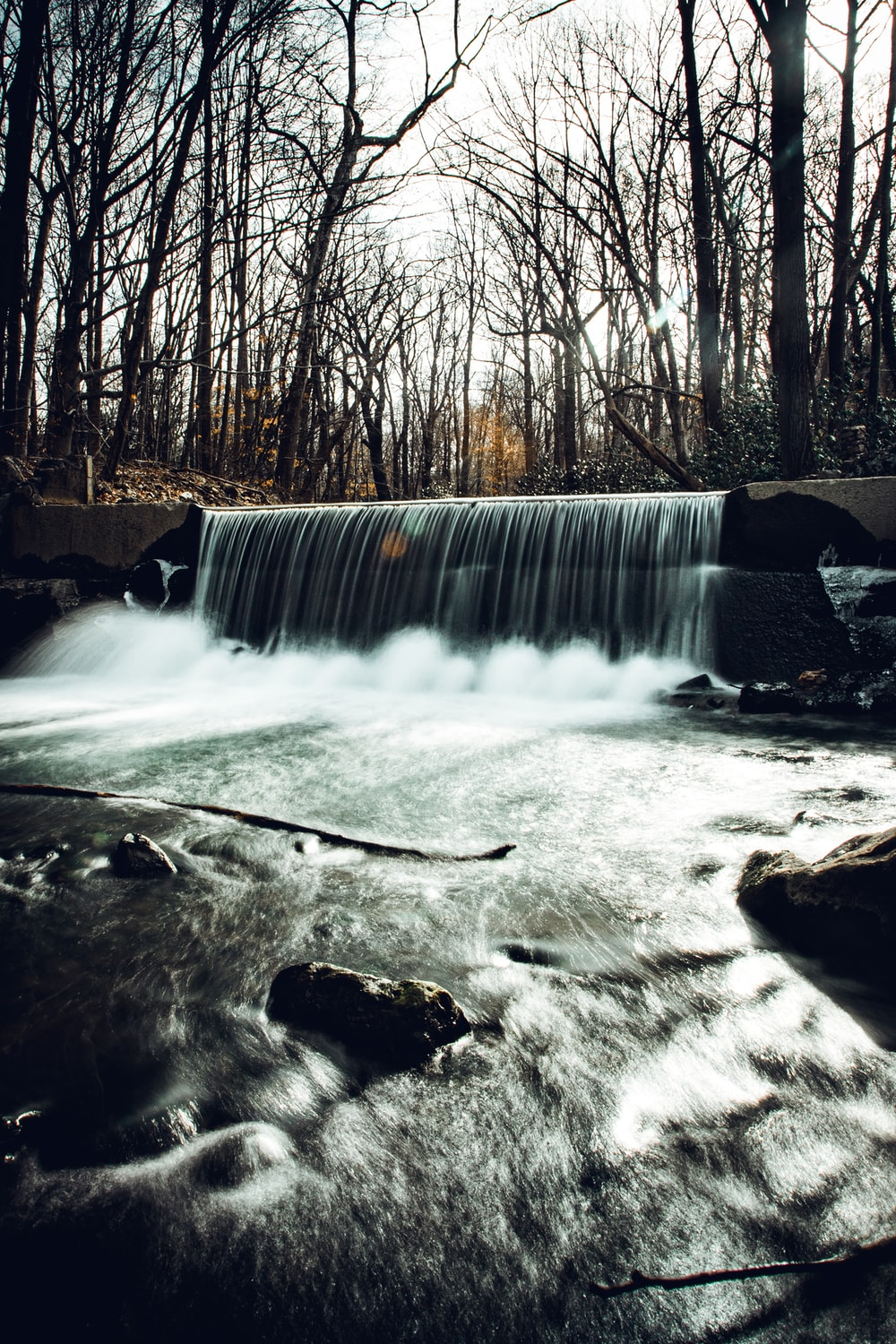 water falls in the middle of bare trees
