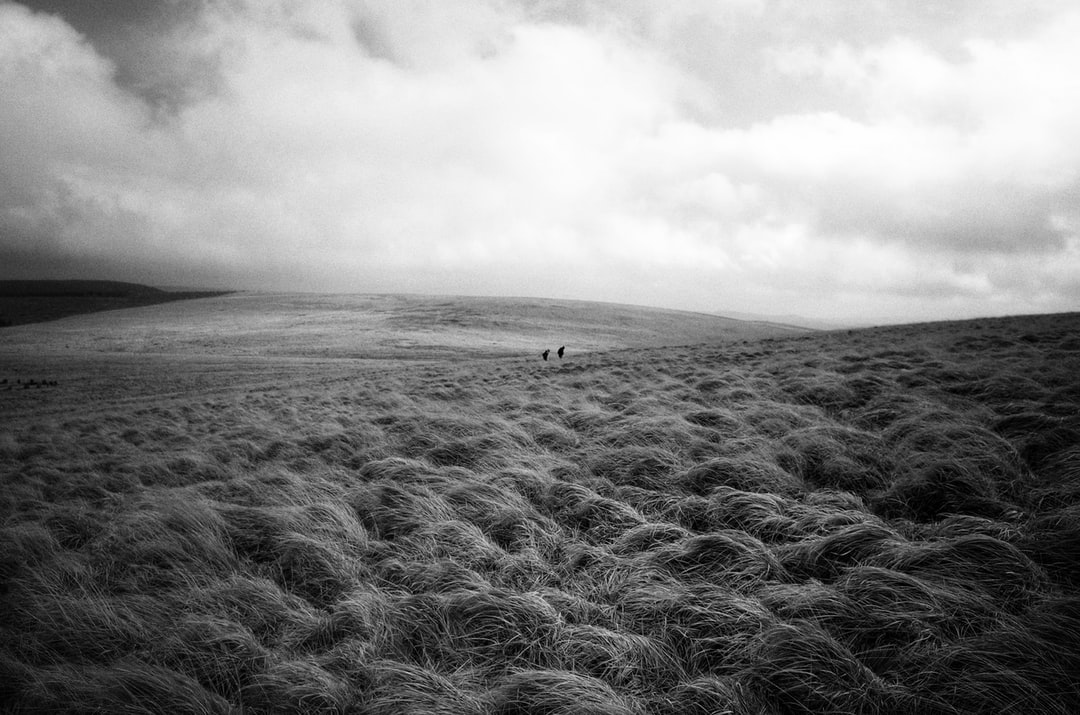 Grayscale Photo of Person Walking On the Field - unsplash
