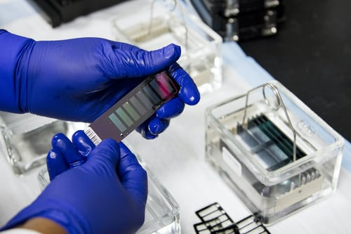The Best DNA Testing Services in India